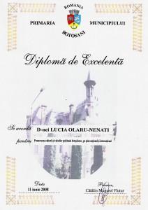 7. Diploma excelenta Botosani, 2008