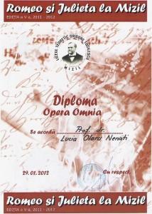 Diploma Mizil, 2013