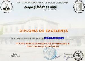 Diploma excelenta Mizil 2014
